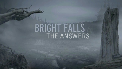 Bright Falls - The Answers